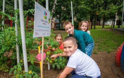 Organic farming and other healthy habits in pre-school institutions